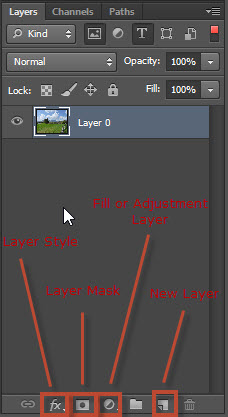 Create a new layer in the Layers panel
